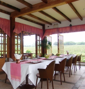 Enjoy dinner at PB Valley winery Great Hornbill with views of the wineries vineyards
